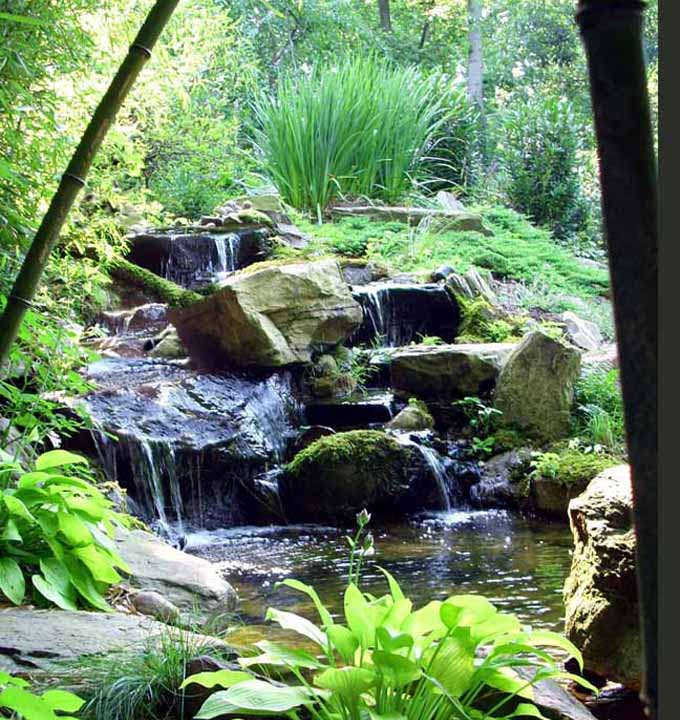 Natural pond contractor in annapolis maryland water features for Natural koi pond