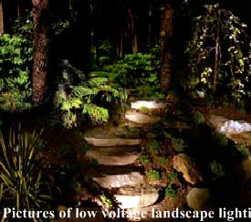 Low voltage lighting stone steps