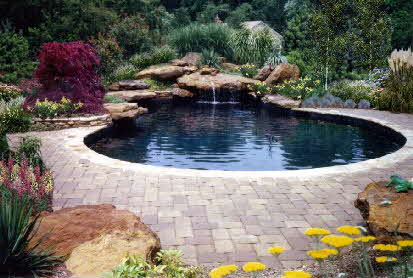 Swimming Pool in Maryland- natural waterfalls and dive rock
