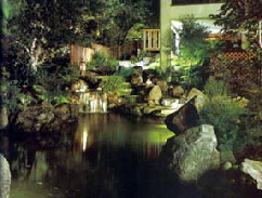 pond and water feature outdoor lighting