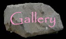 Low Voltage landscape lighting/outdoor garden lighting