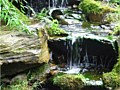 <b>Pondless waterfalls </b>