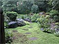 <b>More rockscaping in Annapolis Md</b><br>Inviting....Where does it lead? No Mulch!