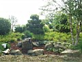 <b>Japanese Rock Garden</b><br>Picture of natural japanese rock garden in Eastern Shore Maryland